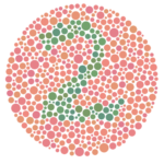 An Ishihara colour plate used to test for colour blindness.